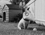 El posible universo compartido de Tim Burton y 9 curiosidades más de 'Frankenweenie'