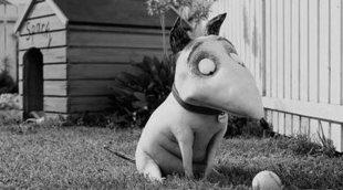 10 curiosidades de 'Frankenweenie'