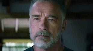 James Cameron explica por qué el Terminator de Arnold Schwarzenegger envejece en 'Destino oculto'