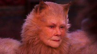 Las críticas de 'Cats' son justo lo que esperabas: cat-astróficas