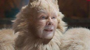 Seth Rogen ve 'Cats' fumado durante la cuarentena y lo tuitea