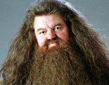 ¿Aparecerán más personajes de 'Harry Potter' en 'Animales Fantásticos 3'?