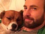 Estas son las únicas fotos de Chris Evans que tenemos que compartir