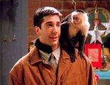 'Friends': El entrenador de Marcel dice que David Schwimmer estaba 'celoso' del mono