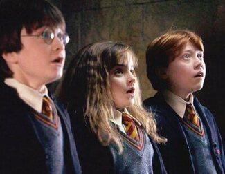 Daniel Radcliffe duda que vaya a haber reunión por los 20 años de 'Harry Potter'