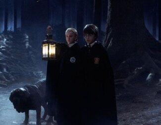 'Harry Potter': El Bosque Prohibido cobrará vida en un nueva atracción en el Reino Unido