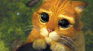 Sinopsis de 'El gato con botas' y 'Kung Fu Panda 2'