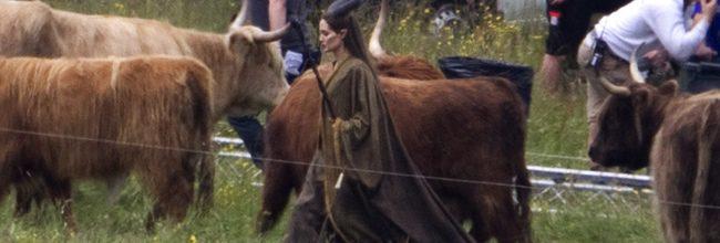 Angelina Jolie presenta 'Maléfica' en la D23 Expo: