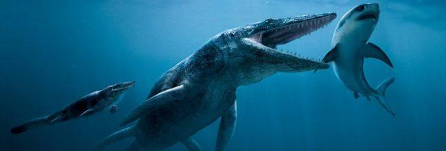 Pliosaurio
