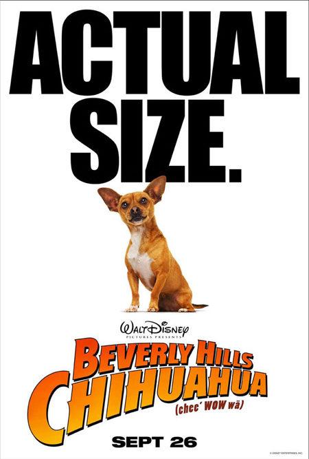 Tres carteles de 'Beverly Hills Chihuahua'