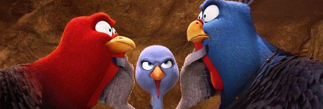 'Free Birds (Vaya pavos)'