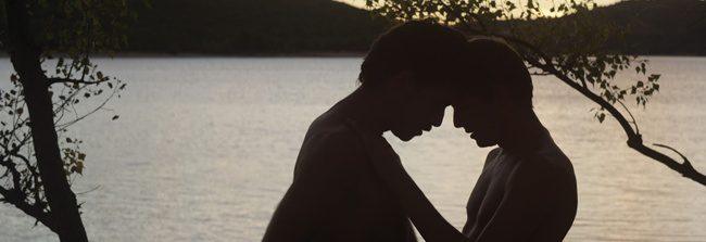'El desconocido del lago': Las leyes del deseo