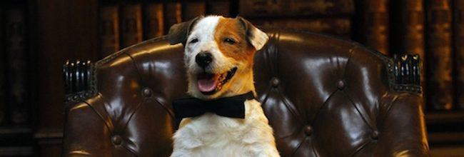 'Pancho, el perro millonario'