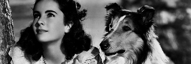 Lassie la cadena invisible