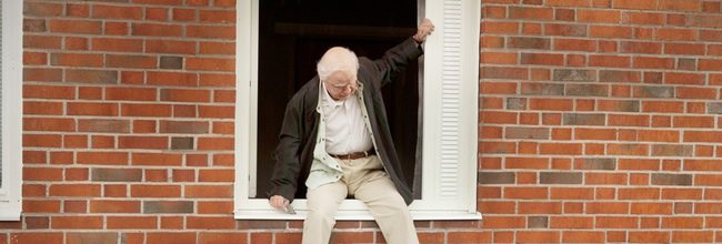 'El abuelo que saltó por la ventana y se largó'