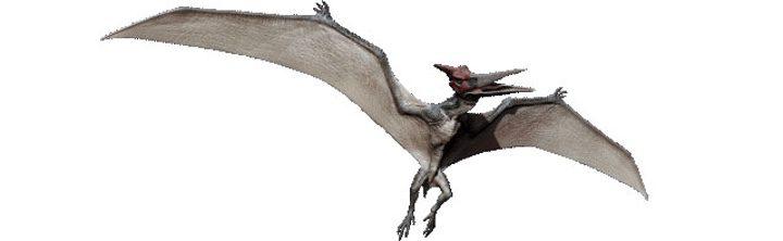 Pteranodon de 'Jurassic World'
