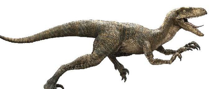 Velociraptor de 'Jurassic World'