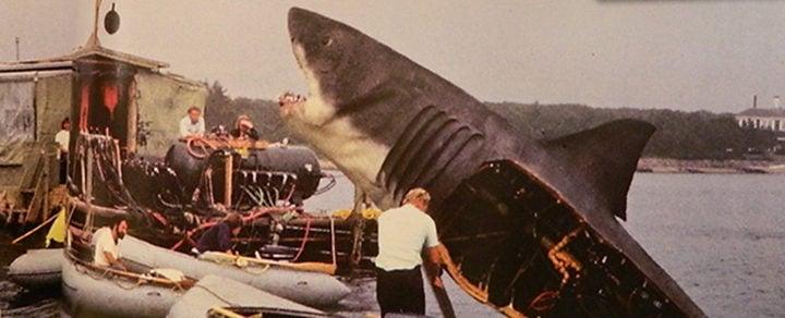 De la A a la Z: 27 curiosidades sobre 'Tiburón'