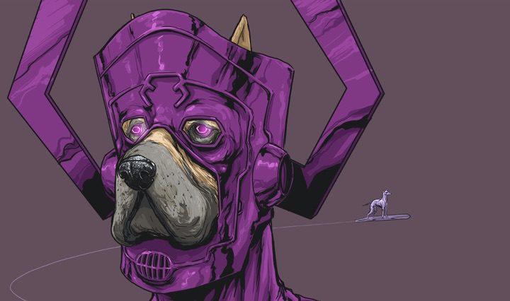 Perro Marvel