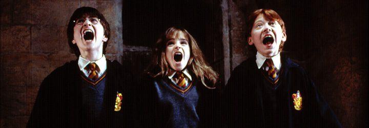 Harry Potter, Hermione y Ron