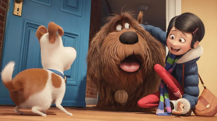 Max conoce a Duke en 'Mascotas'