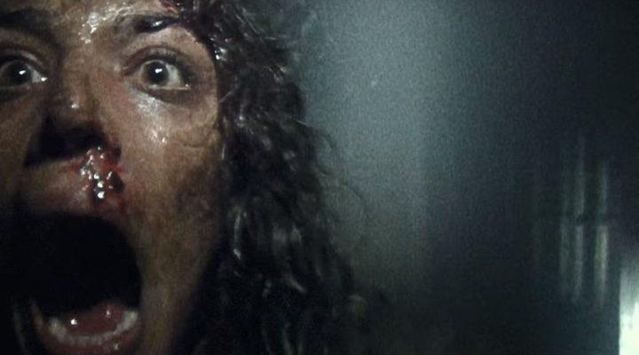 Nuevo tráiler de 'Blair Witch'