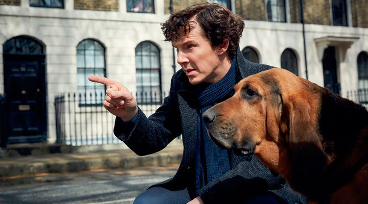 Benedict Cumberbatch (Sherlock) con un sabueso