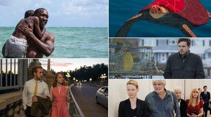 Algunas de las películas mejor valoradas de 2016 según Metacritic: 'Moonlight', 'La ciudad de las estrellas: La La Land', 'La tortuga roja', 'Manchester frente al mar' y 'Toni Erdmann'