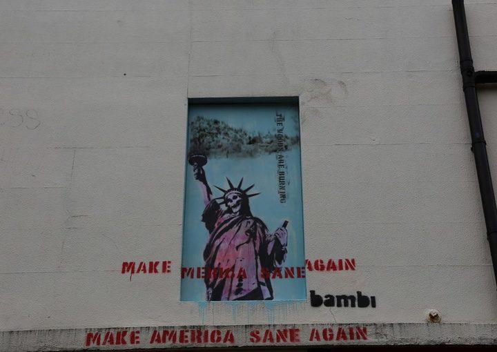 'Make America Sane Again'