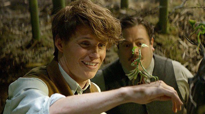 Newt Scamander interpretado por Eddie Redmayne