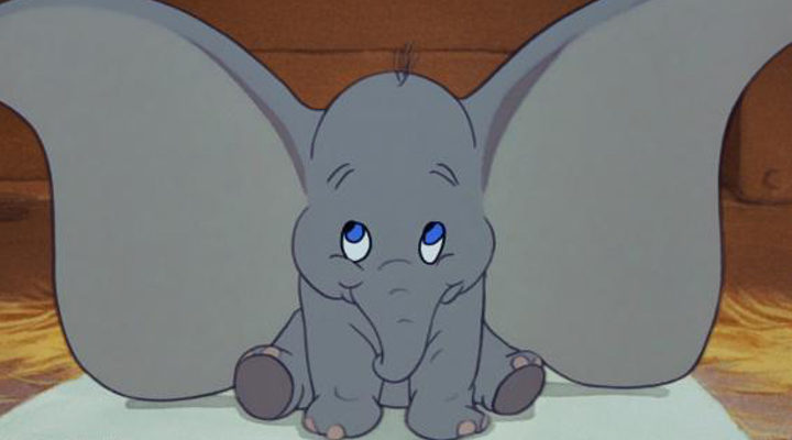 'Dumbo'