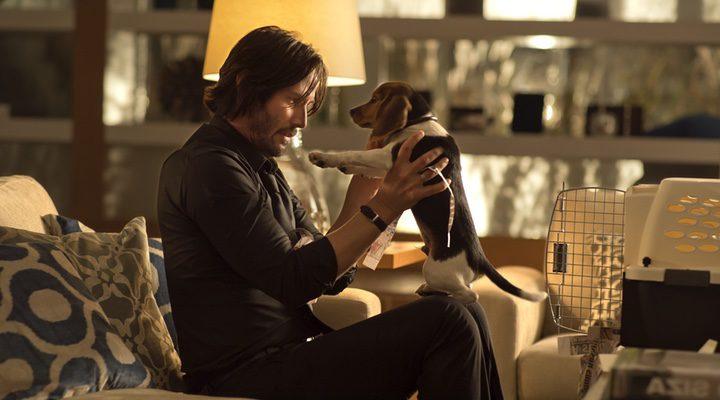 john wick con su perro