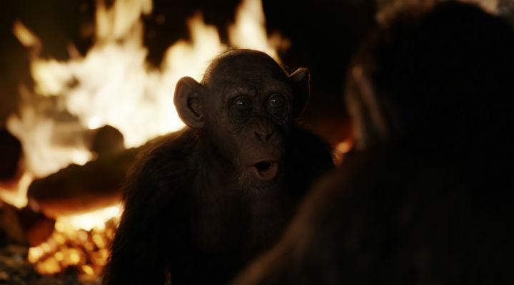 Steve Zahn es Bad Ape