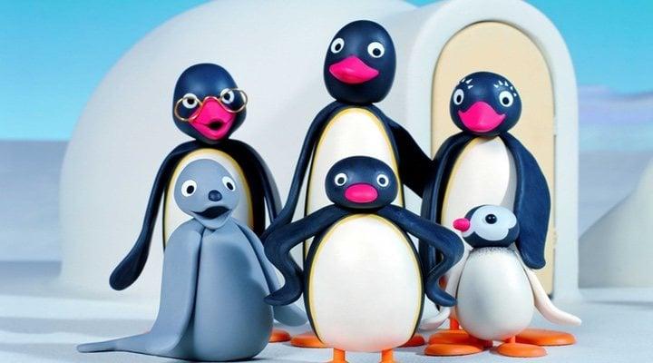 'Pingu'