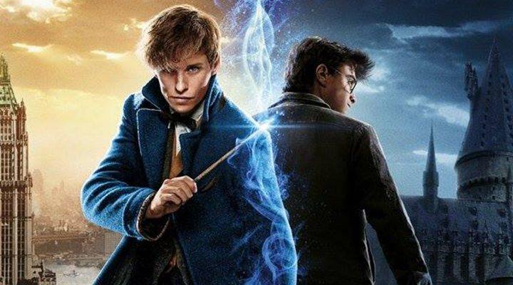 Harry Potter Film Fest