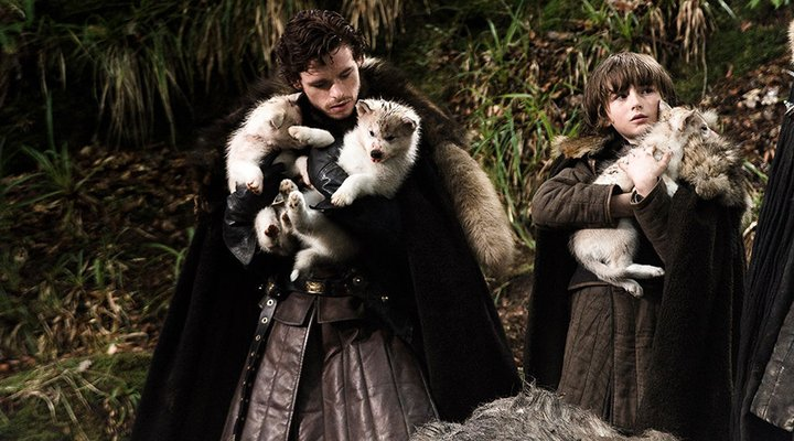 Bebés lobo huargo 'Game Of Thrones'