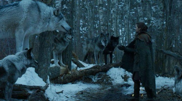 Nymeria y su banda