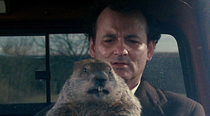 Bill Murray 'Atrapado en el tiempo' Día de la marmota