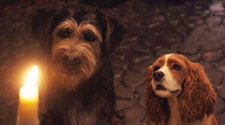 El estilo de la acción real reduce la complejidad de emociones que se ven en las caras de los perros en 'La dama y el vagabundo'