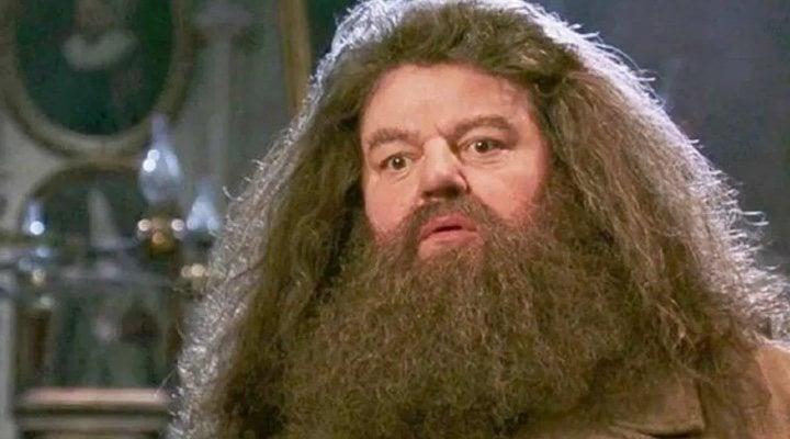Hagrid, personaje de 'Harry Potter'