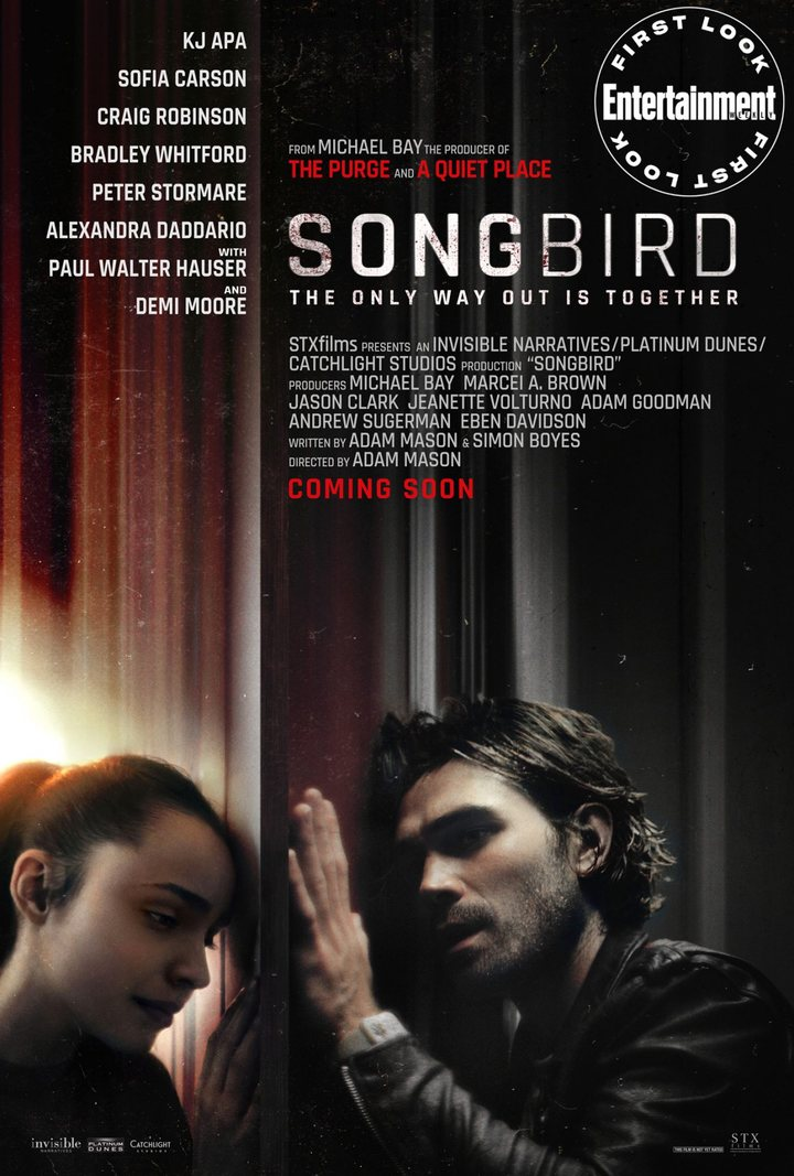 'Songbird'