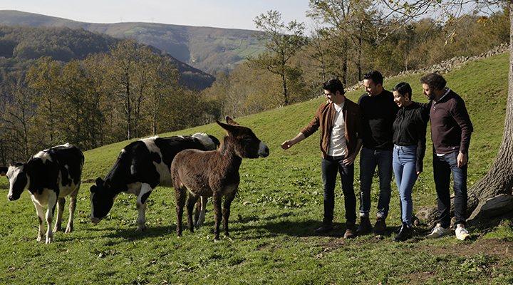 El equipo de 'Dos vacas y una burra'