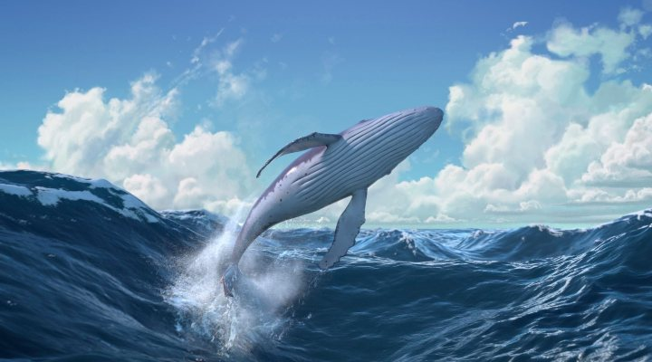 El caracol y la ballena