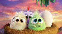 Teaser Día de la madre 'Angry Birds. La película'