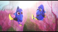 https://www.movienco.co.uk/trailers/baby-dory-clip-finding-dory/