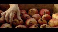 Tráiler español 'Pastel de pera con lavanda'