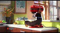 'Mascotas': Presentación Buddy