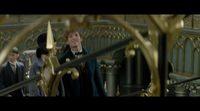 Featurette IMAX Fan 'Animales fantásticos y dónde encontrarlos'