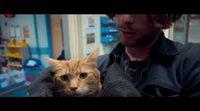 Tráiler 'A Street Cat Named Bob'