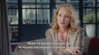 'Animales Fantásticos y Dónde Encontrarlos': Entrevista a J.K.Rowling